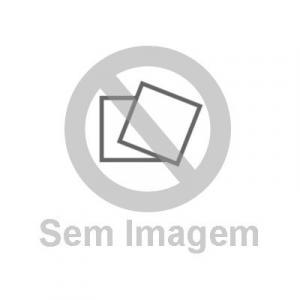 Direitas em movimento: a campanha da mulher pela democracia e a ditadura no Brasil