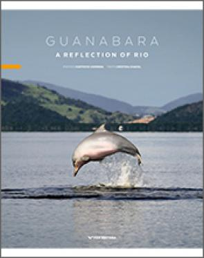 Guanabara a reflection of Rio
